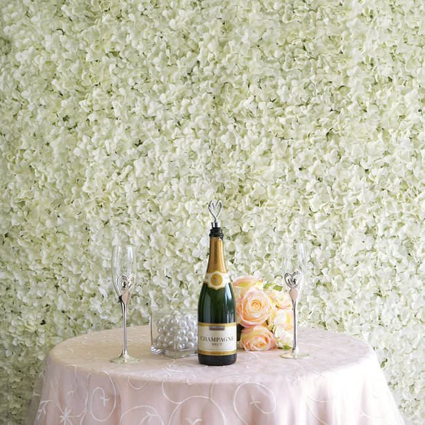 Flower Wall with champagne bottle, glasses and roses on table