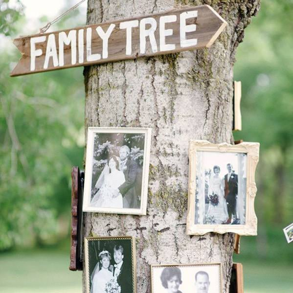 tree with family tree sign & photo frames